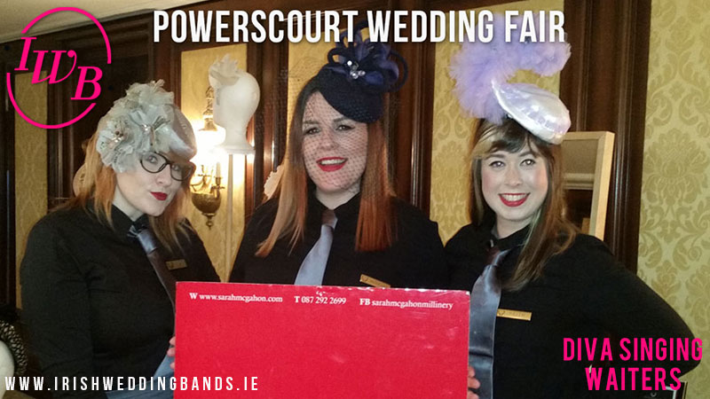 The Singing Waiters - Everything you need to know about Ireland's best wedding entertainment.